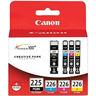 4530B008 Ink Cartridge - Canon Genuine OEM (Bundle Pack)