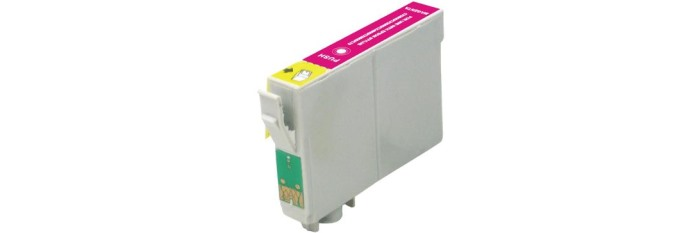 T073320 Ink Cartridge - Epson Remanufactured (Magenta)