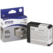 T580700 Ink Cartridge - Epson Genuine OEM (Light Black)