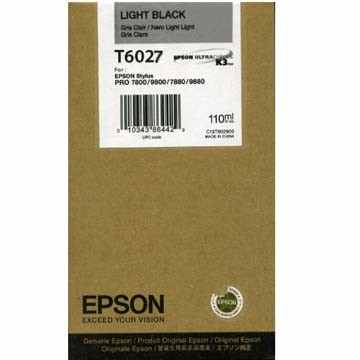 T602700 Ink Cartridge - Epson Genuine OEM (Light Black)