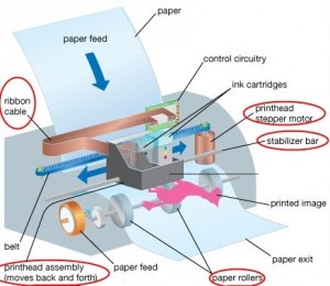 Inside an Inkjet