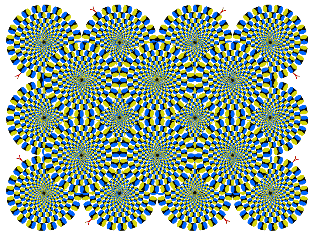 optical illusions rotating illusion same snakes works believing seeing always based kitaoka way moving cool movimiento tricks pages visual perception