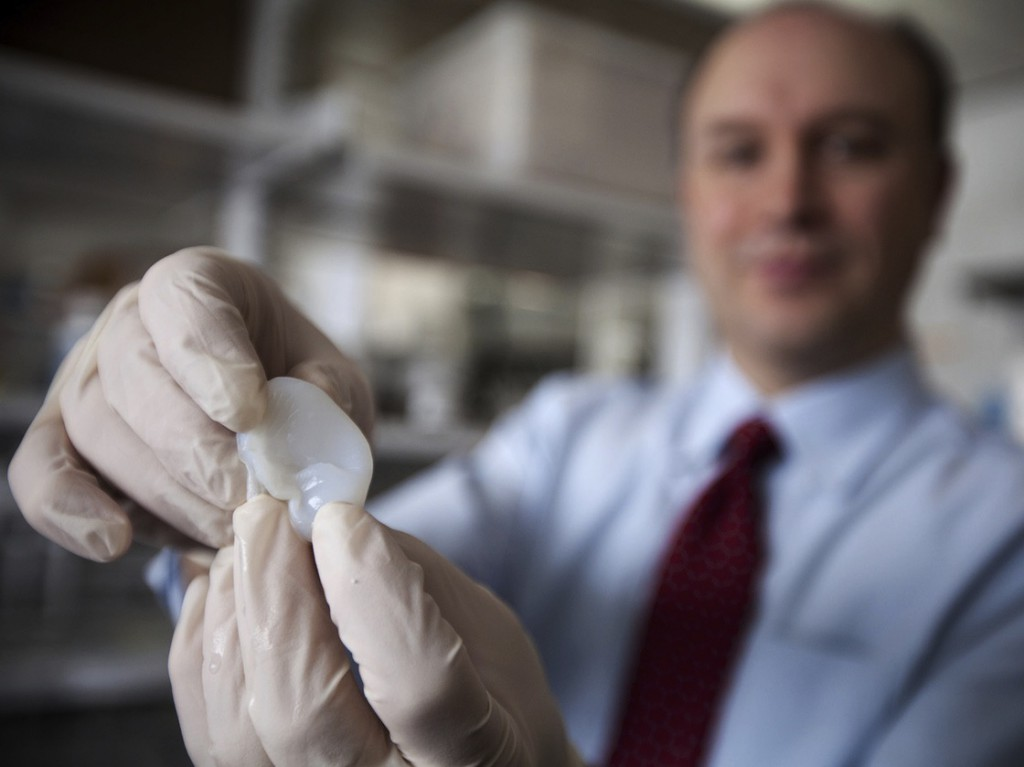 Larry Bonassar shows off an ear built out of living cartilage cells